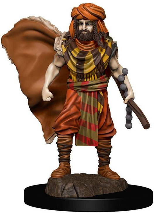 D&D Premium Painted Figure: Male Human Druid (Wave 4)