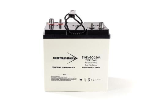 Bright Way BW EVGC6-220A Battery - 6V 220AH Group GC2