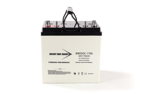 Bright Way BW EVGC8-170A Battery - 8V 170AH Group GC2