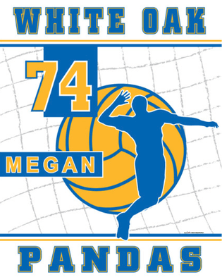 Personalized Boys Volleyball Flag - Size: 14 x 19 5