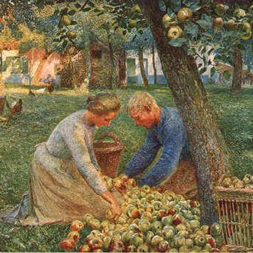 General Orchard Establishment Workshop - postponed