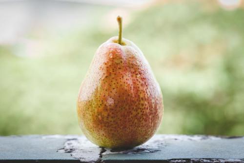 Corella Pear (Forelle) (semi-dwarf)