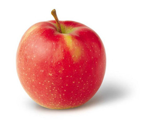 Jonagold Apple (stepover)