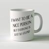 I Want to be Nice Mug