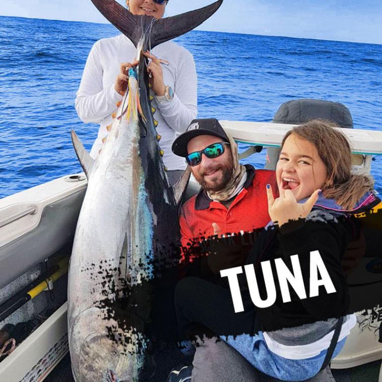 Tuna Lures