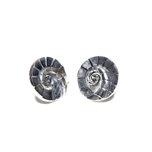 Gaudi's Spiral Earrings (1142323PP)