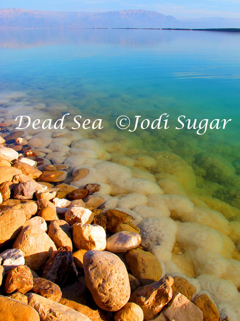"Dead Sea Photo  on Canvas by 17"" x 25"" Jodi Sugar"