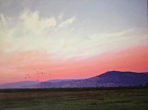 "Hula Valley at Dawn Giclee on Canvas by Jodi Sugar 12"" x 16"""