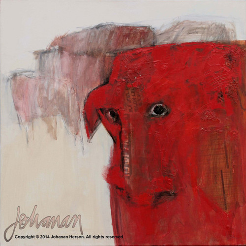 "Red Cow by Johanan Herson 25"" x 25"""
