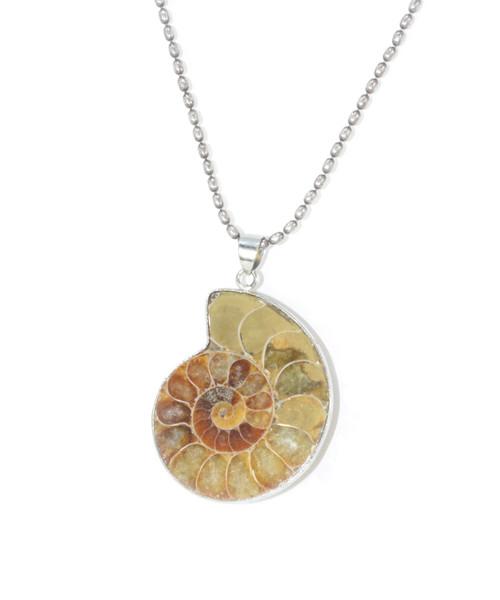 Abalone Slice Pendant Necklace