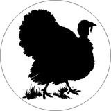 BIRDS - TURKEY 2