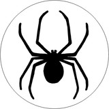 Insects - Spider D3