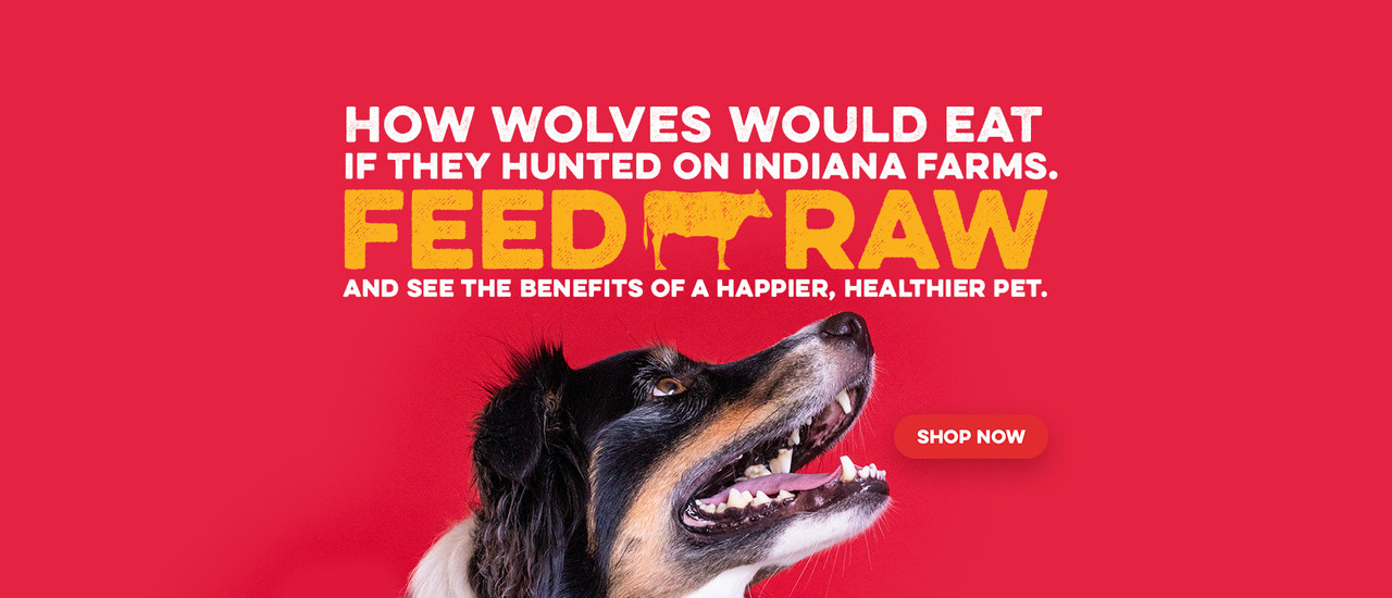 How wolves would eat if the hunted on Indiana Farms. Feed raw and see the venefits of a happier, healthier pet. Shop now