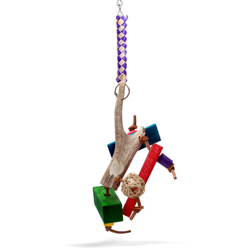 Large Avian Toy hung