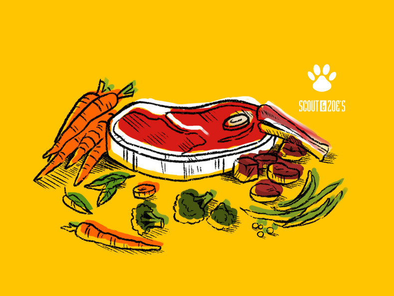 Why I Feed My Dogs Raw Meat