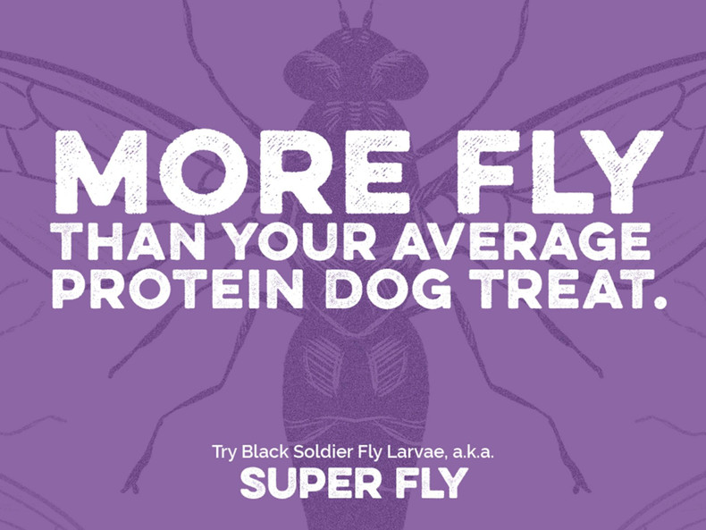 Scout & Zoe's New Product Line: Super Fly