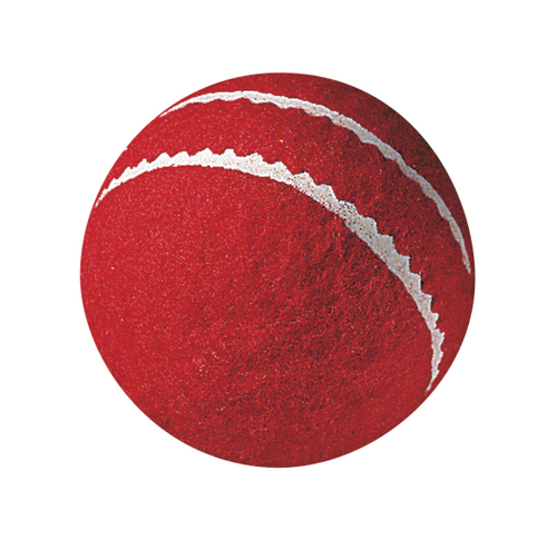 Cricket BALL - FIRST BALL     (Youth size)