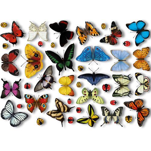 25 Realistic Butterflies & 17 Ladybird Window Non-Adhesive Clings by Articlings