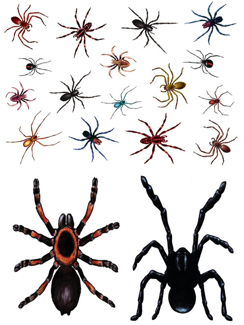 Realistic Spider Window Clings Stickers - Practical Joke April Fools Halloween