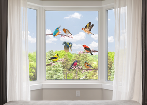 8 Birds with Blossom Branches Window Clings Non Adhesive Vinyl Stickers Beautiful Glass Safety Sticker the Decals can Deter Birds from Window Collision Strike