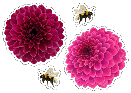 8 Large Flower Window Clings Non Adhesive Stickers Beautiful Vinyl Decoration can be use as Glass Safety Stickers to Deter Birds from Window Collision Strike