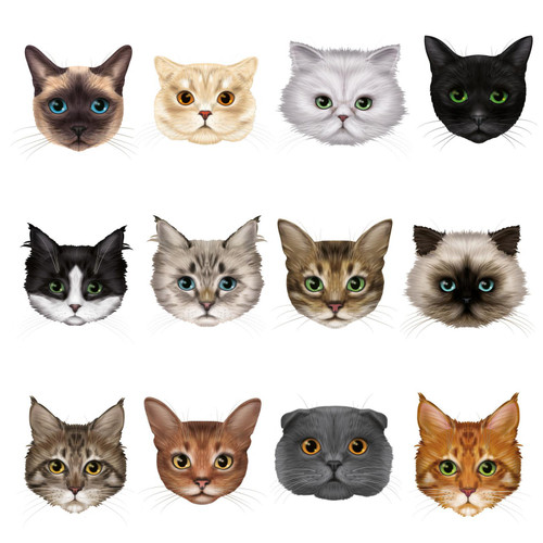 12 Cute Cat Face Window Clings Non-adhesive Stickers by Articlings