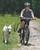 Springer Dog Exerciser Kit