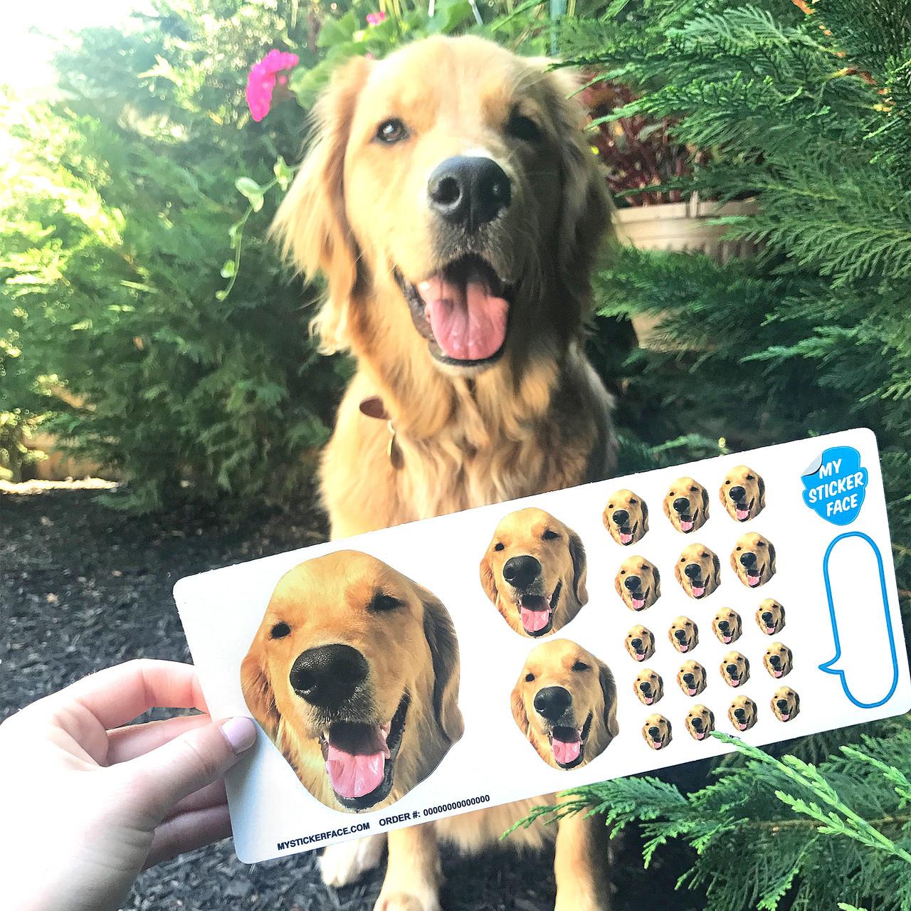 Sampler Face Sticker Sheet - 3 Pack