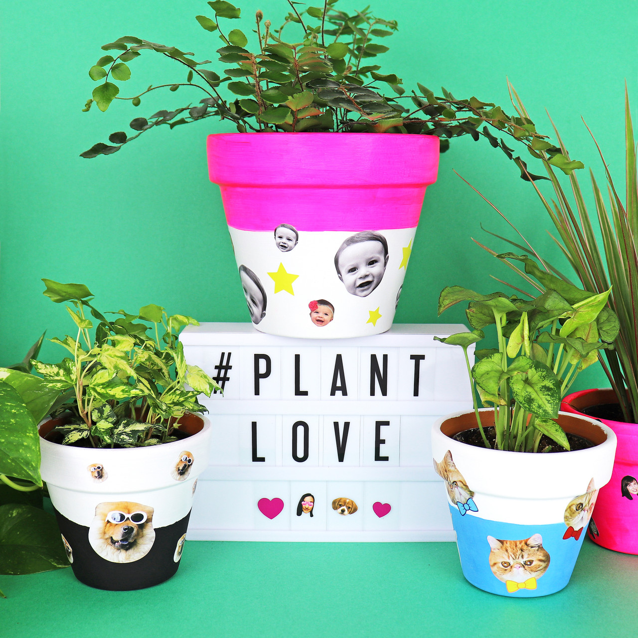DIY Personalized Pots