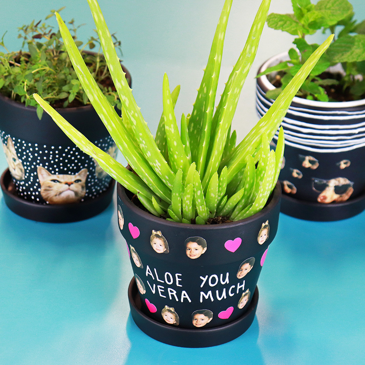 DIY Personalized Chalkboard Pots