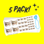 Elite Sampler Face Sticker Sheet - 5 Pack