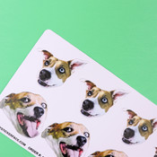 Duo Sampler Face Sticker Sheet - 5 Pack