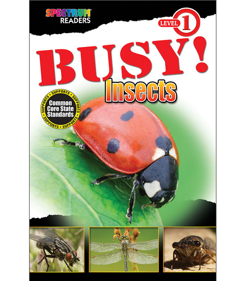 BUSY! Insects Reader Free eBook