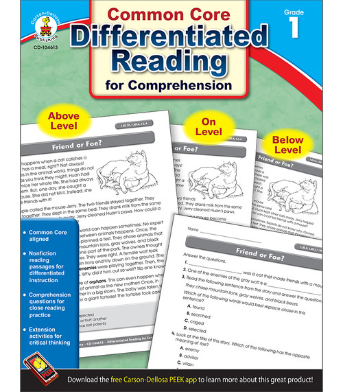 Differentiated Reading for Comprehension Product Image Description