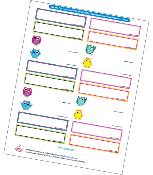 Colorful Owls Editable Labels Free Printable