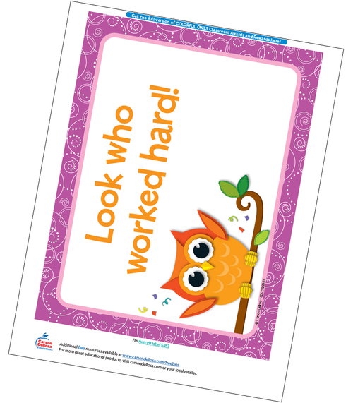 Colorful Owls Full Page Certificate Free Printable Sample Image
