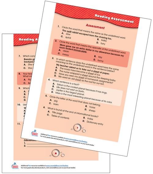 Reading Assessment Grades 2-3 Free Printable Sample Image