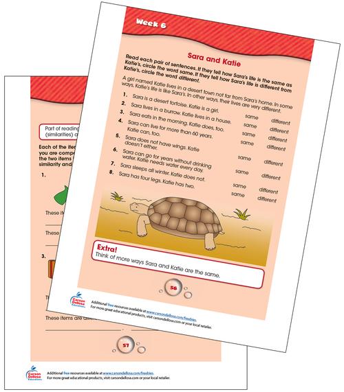 Week 6 Grades 2-3 Free Printable Sample Image