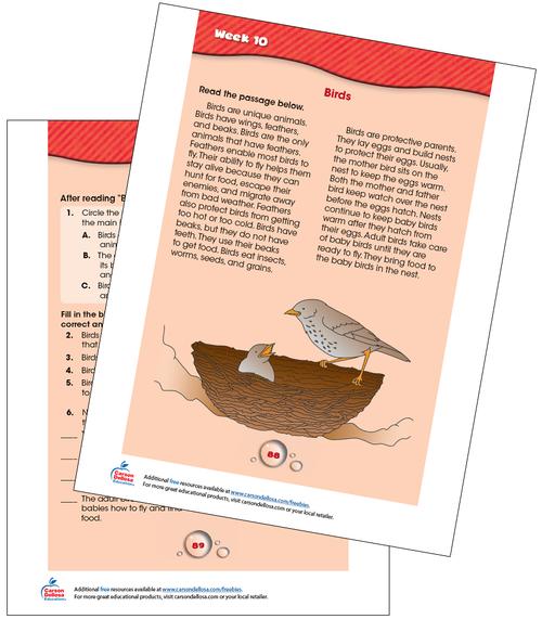 Week 10 Grades 2-3 Free Printable Sample Image
