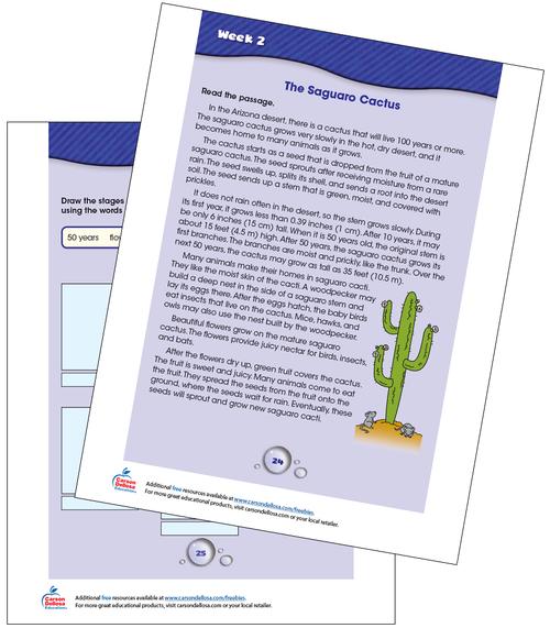 Week 2 Grades 3-4 Free Printable Sample Image