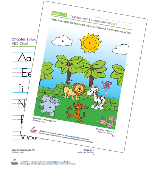 Identifying Capital and Lowercase Letters Kindergarten Free Printable Sample Image