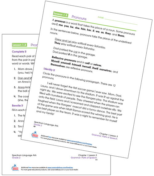 Identifying Pronouns Grade 2 Free Printable Sample Image