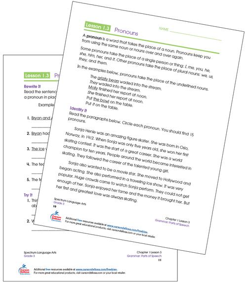 Circling and Writing Pronouns Grade 3 Free Printable Sample Image