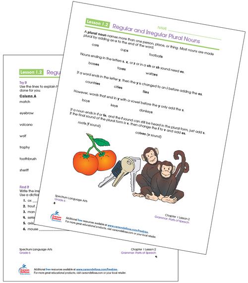 Regular and Irregular Plural Nouns Grade 6 Free Printable Sample Image