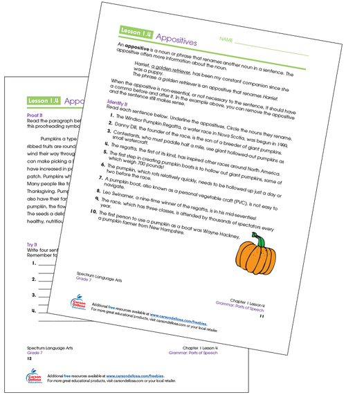 Appositives Grade 7 Free Printable  Sample Image