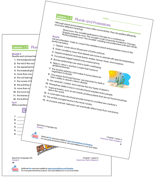 Plurals and Possessives Grade 8 Free Printable Sample Image