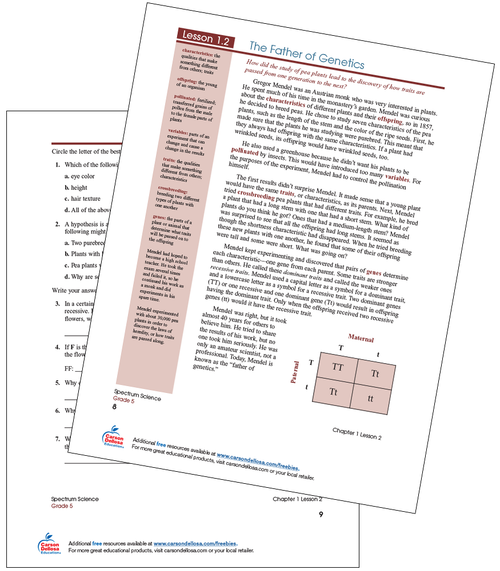 The Father of Genetics Free Printable Worksheet