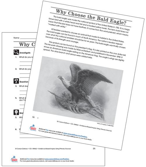 Why Choose the Bald Eagle Grade 4 (Below Grade Level) Free Printable Worksheet