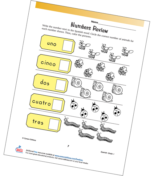 Numbers 1-5 Review Grade 1 Spanish Free Printable Worksheet