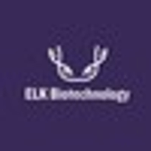 Rat 6ketoPGF1α(6-keto-PGF1 alpha) ELISA Kit